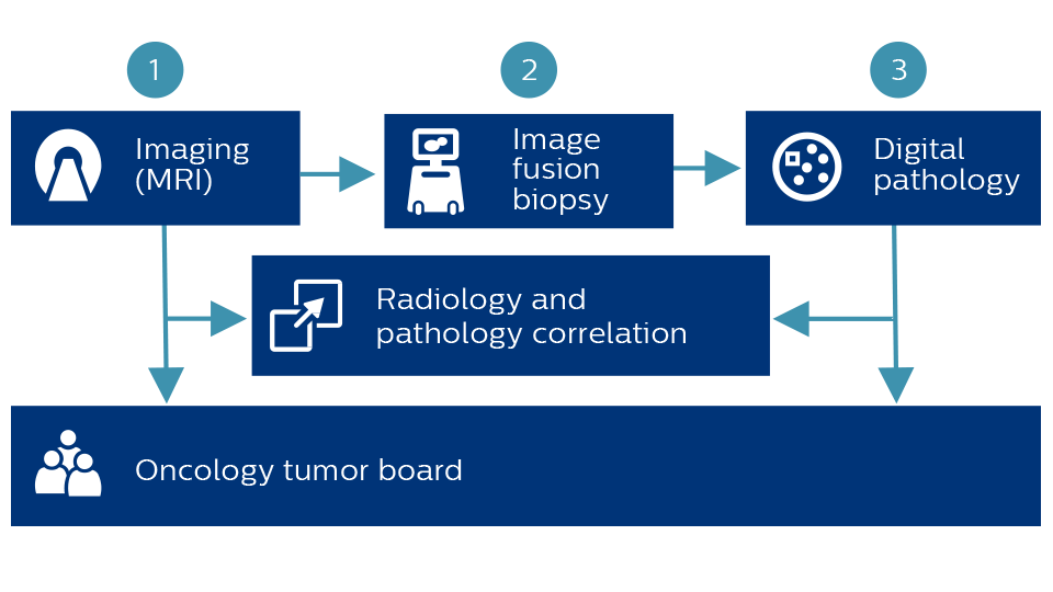 Diagram connecting MR, Image fusion biopsy, digital pathology, radiology and pathology, and the oncology tumor board
